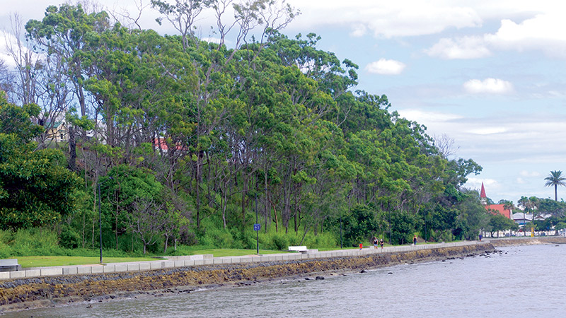 The Future Of The Shorncliffe Escarpment